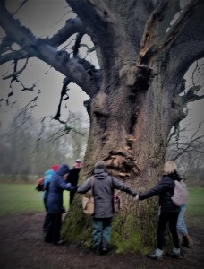 meeting the tree 200118