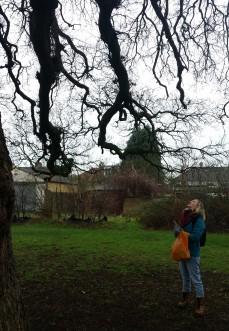meeting the tree 3 200118