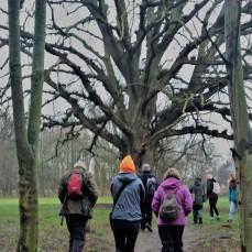 towards the tree 200118